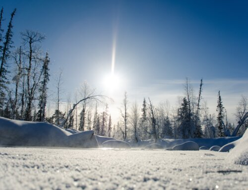 Snow Clearing Tips for Canmore and Banff